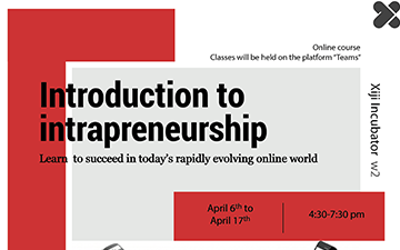 Introduction to Intrapreneurship: Succed in the New Online World